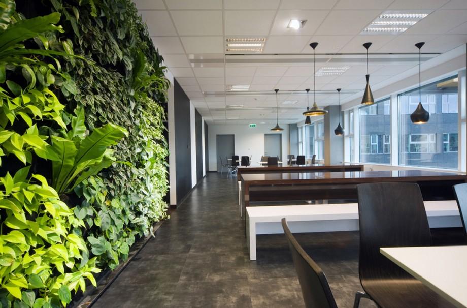 Thiết kế nội thất văn phòng với không gian xanh