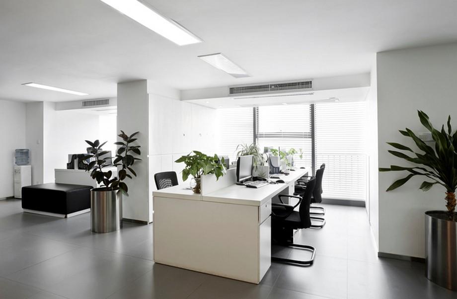Phong thủy bàn làm việc cho người mệnh Thủy trong thi công nội thất văn phòng
