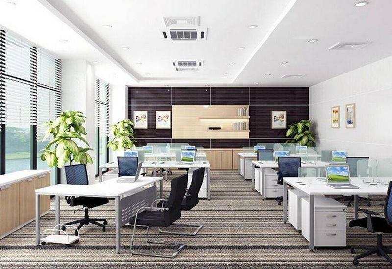 Thiết kế văn phòng 30m2 với ánh sáng tự nhiên nhiều